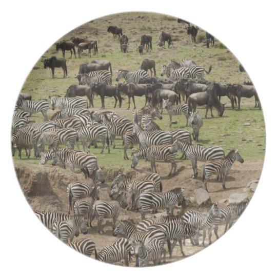 Kenya, No Water No Life Mara River Expedition, 5 Melamine Plate