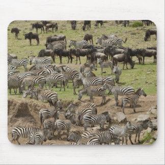 Kenya, No Water No Life Mara River Expedition, 5 Mouse Pad