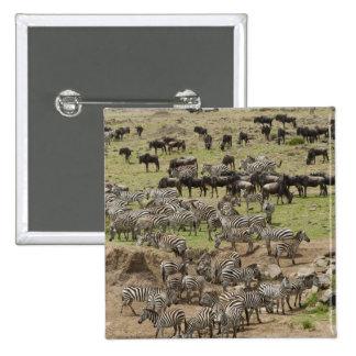 Kenya, No Water No Life Mara River Expedition, 5 Pinback Button