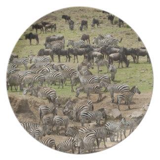 Kenya, No Water No Life Mara River Expedition, 5 Plate