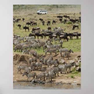 Kenya, No Water No Life Mara River Expedition, 5 Posters