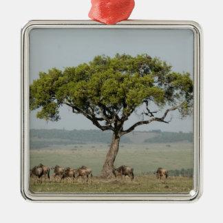 Kenya, No Water No Life Mara River Expedition, Metal Ornament