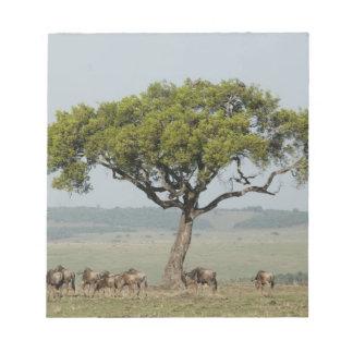 Kenya, No Water No Life Mara River Expedition, Note Pad