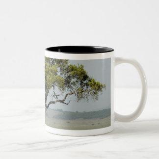 Kenya, No Water No Life Mara River Expedition, Two-Tone Coffee Mug
