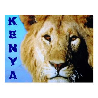 Kenya safari postcard