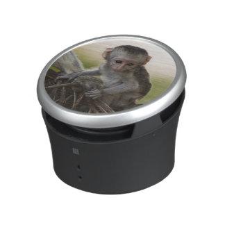 Kenya, Samburu Game Reserve. Vervet Monkey Bluetooth Speaker