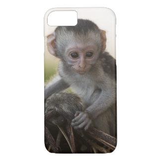 Kenya, Samburu Game Reserve. Vervet Monkey iPhone 7 Case