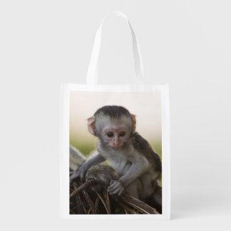 Kenya, Samburu Game Reserve. Vervet Monkey Reusable Grocery Bag
