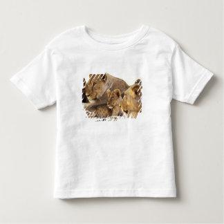 Kenya, Samburu National Game Reserve. Lion cub 2 Toddler T-shirt