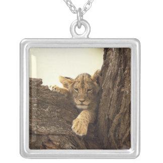 Kenya, Samburu National Game Reserve. Lion cub Silver Plated Necklace