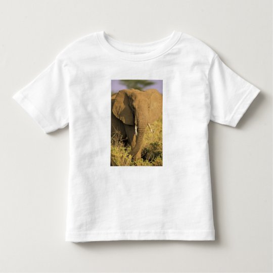 Kenya, Samburu National Reserve. African Toddler T-shirt