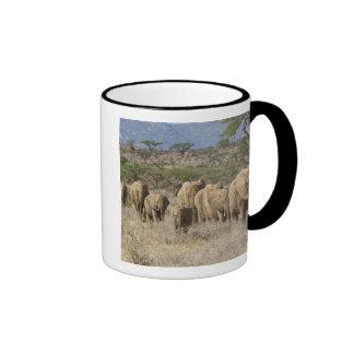 Kenya, Samburu National Reserve. Elephants Ringer Mug