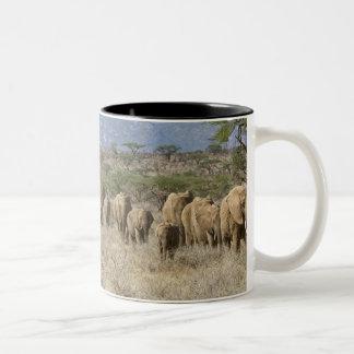 Kenya, Samburu National Reserve. Elephants Two-Tone Coffee Mug