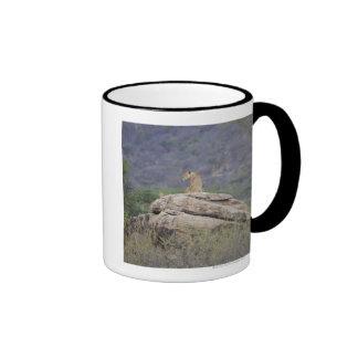 Kenya Samburu Nature Reserve female lion on Coffee Mug