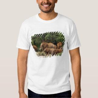 Kenya: Tsavo East National Park, herd African T-Shirt