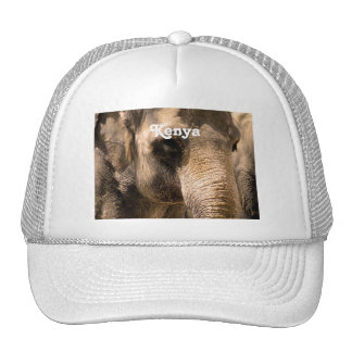 Kenyan Elephants Trucker Hat