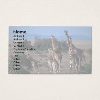 Kenyan Giraffes Business Card