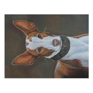 Kenzie la postal del arte del perro de caza de Ibi