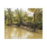 Kerala Backwaters India Canvas Print
