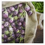 Kerelan Eggplant Large Square Tile