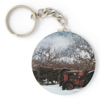Keremeos Orchard in Winter Keychain