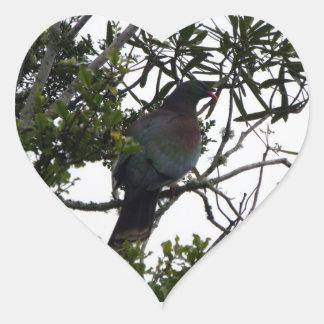 Kereru (Native Wood Pigeon) Heart Sticker