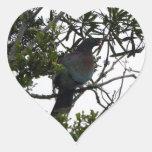 Kereru (Native Wood Pigeon) Heart Stickers