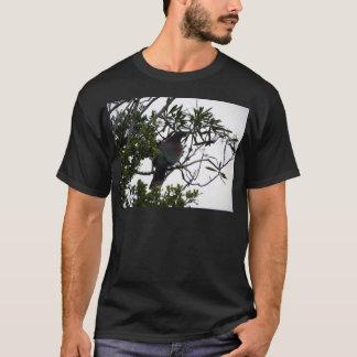 Kereru (Native Wood Pigeon) T-Shirt