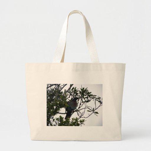 Kereru (paloma de madera nativa) bolsas