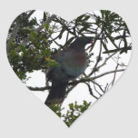 Kereru (paloma de madera nativa) calcomanías de corazones