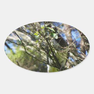 Kereru Plucking Leaf Oval Sticker