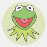 Kermit la cabeza del dibujo animado de la rana etiqueta redonda