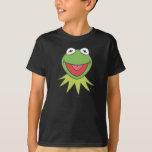 Kermit la cabeza del dibujo animado de la rana playera