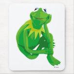 Kermit los ojos encantadores Disney de la rana Tapetes De Ratones