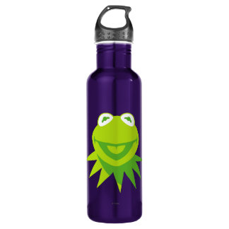 Kermit the Frog Smiling Stainless Steel Water Bottle