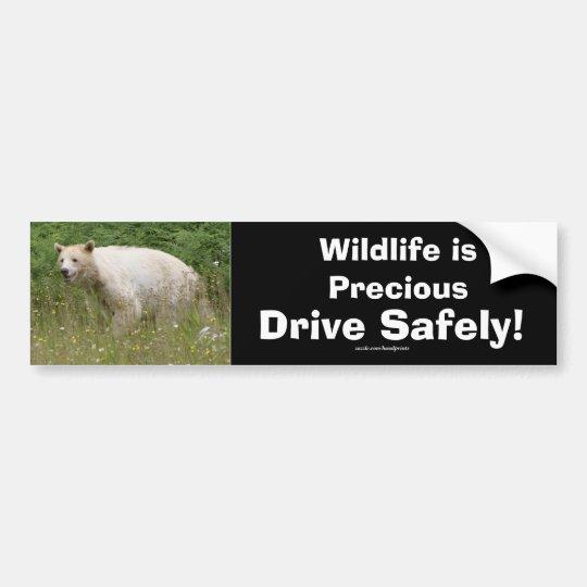 Kermode Spirit Bear Driver Safety Bumpersticker Bumper Sticker