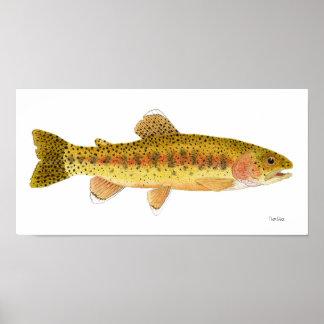 Kern River Rainbow Trout Art Poster