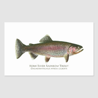 Kern River Rainbow Trout Rectangular Sticker