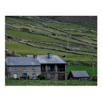 Kerry / Ireland Postcard
