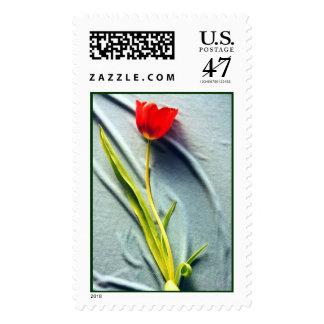 Kerstin's Red Tulip Stamp