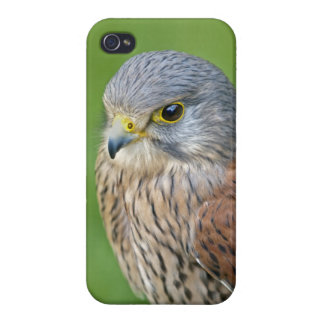 Kes iPhone 4 Savvy Case iPhone 4/4S Covers