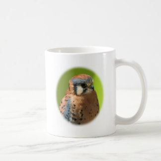 Kestrel_1739 Coffee Mugs