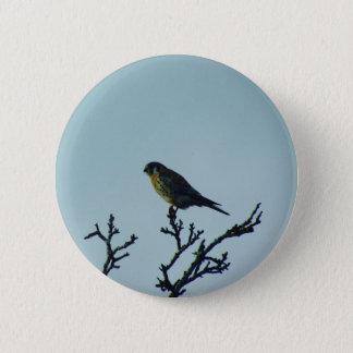 Kestrel Button