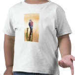 Kestrel, Falco sparverius, Native to US & Canada T-shirts