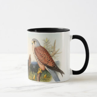 Kestrel Falcon John Gould Birds of Great Britain Mug