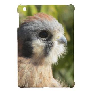 Kestrel iPad Mini Case