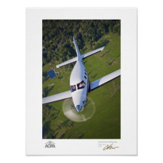 Kestrel Over Golf Course Gallery Poster