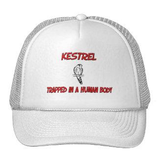 Kestrel trapped in a human body trucker hat