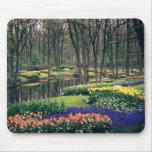 Keukenhof, a floral banquet mousepads