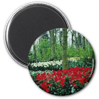 Keukenhof Gardens, Lisse, Netherlands  flowers Fridge Magnets